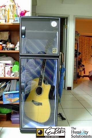 Eureka Dry cabinet protecting guitar from humidity damage, moisture damage