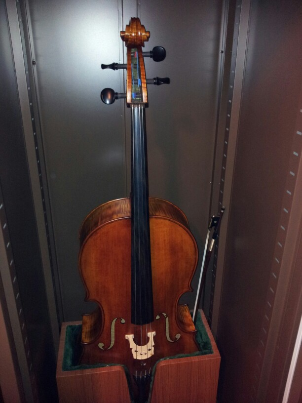 Cello protected in Eureka Auto Dry Box